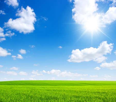 Zelená pole, modrá obloha a slunce Reklamní fotografie