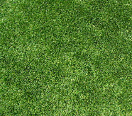 lawn area: Background of a green grass. Texture green lawn Stock Photo