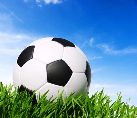 soccer ball on the grass - football photo
