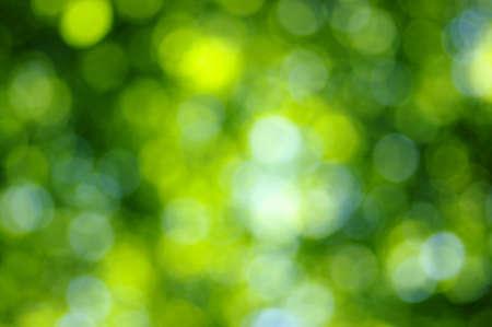 vert bokeh fond clair abstrait