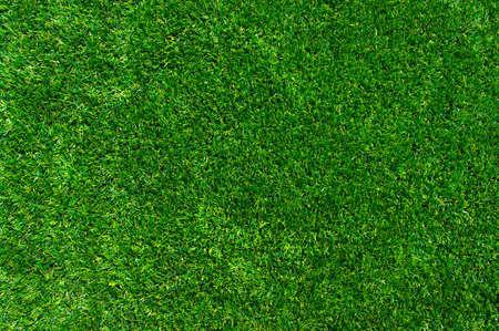 緑の草の背景。テクスチャの緑の芝生