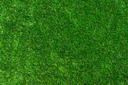 Background of a green grass. Texture green lawn photo
