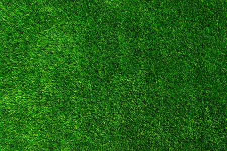 grass area: Background of a green grass. Texture green lawn Stock Photo