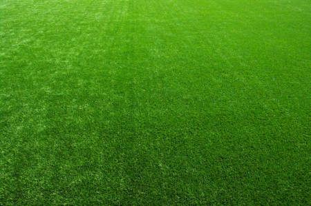 Background of a green grass Standard-Bild