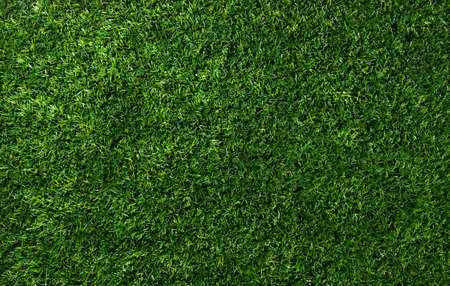 Background of a green grass. Texture green lawn Banco de Imagens