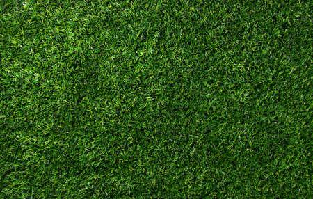 Background of a green grass. Texture green lawn Standard-Bild