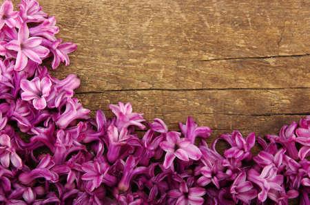 Spring  flower on wood background photo