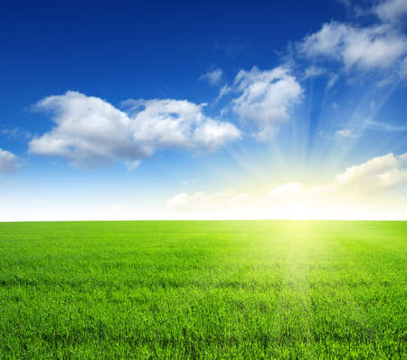 blue and green: Green field, blue sky and sun