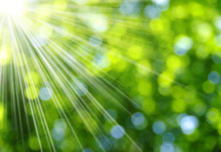 sunbeam: Green blurred background and sunlight