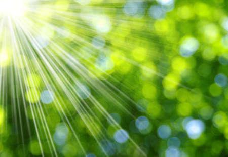 Groene vage achtergrond en zonlicht Stockfoto