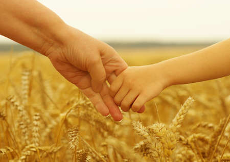 hold hands: Hands of mother and daughter holding each other on wheat field