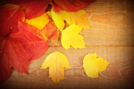 autumn leaves on wooden background Stock Photo