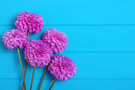 Flowers on blue painted wooden planks. Place for text. Stock Photo