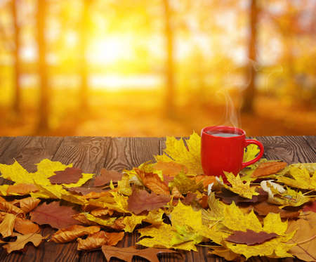 Autumn leaves and hot steaming cup of coffee. Wooden table on sun light background. Fall time concept.