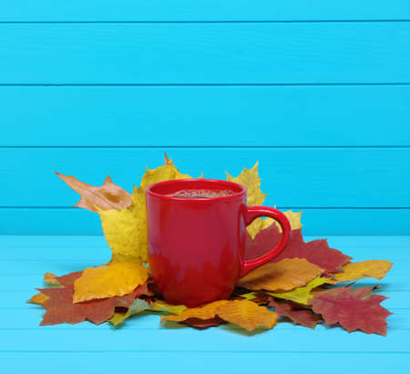 Autumn leaves, hot steaming cup of coffee  on wooden blue background. Stock Photo