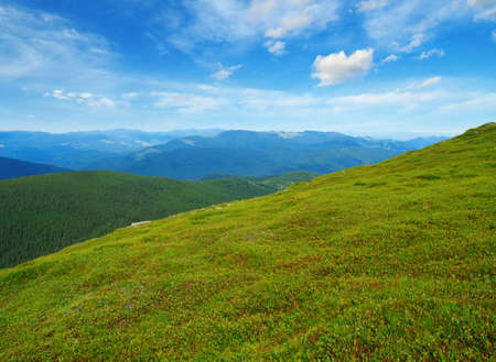 Mountain landscape in the summer Banque d'images