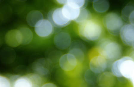 Green blurred background, the bokeh effect. Stock Photo