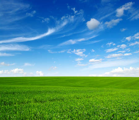 Green grass field on hills and blue sky with clouds Stock Photo