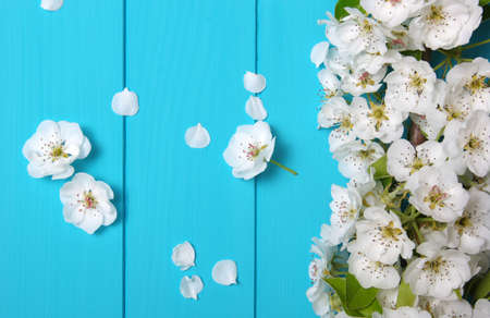 Spring flowers on wooden background. Banque d'images - 120345079