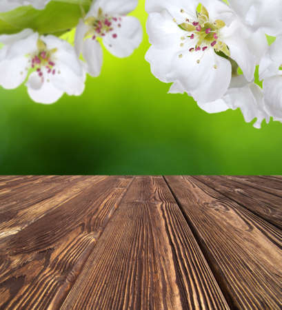 wooden table place and spring blossom Banque d'images - 120345130