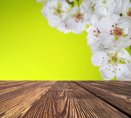 wooden table place and spring blossom Banque d'images - 120345153