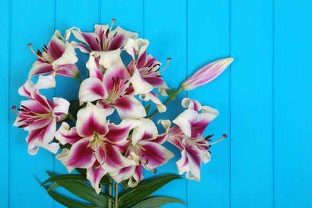 Fresh spring lily flowers on turquoise painted wooden planks Banque d'images - 120345158