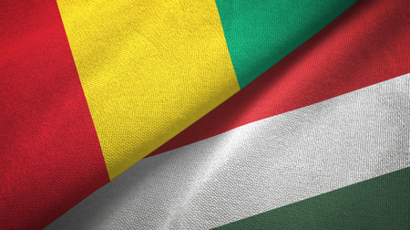 Guinea and Hungary flags together textile cloth, fabric texture