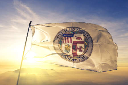 Los Angeles of California of United States flag waving