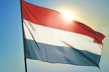 Netherlands flag waving on the wind in front of sun