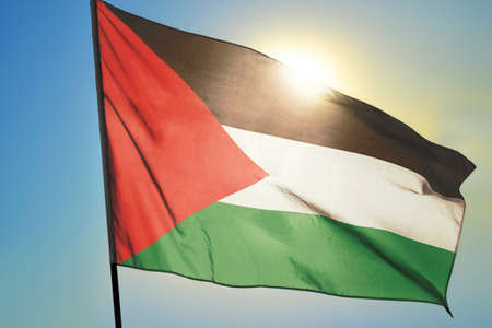 Palestine flag waving on the wind in front of sun 免版税图像