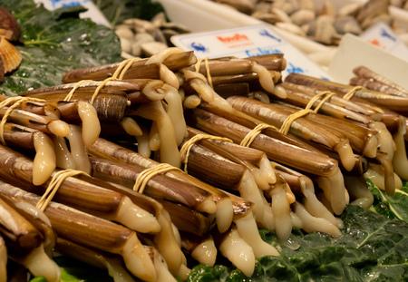 snails food buffet seafood market sticks 스톡 콘텐츠