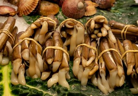 snail snails food buffet seafood market sticks