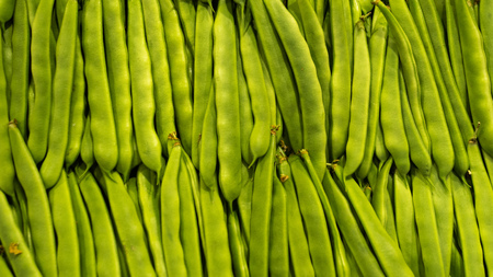 Market rows fresh green organic peas background. Healthy food 스톡 콘텐츠