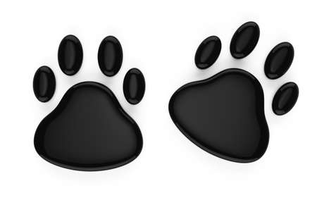 animal footprints symbol isolated on white background  3d rendered image photo