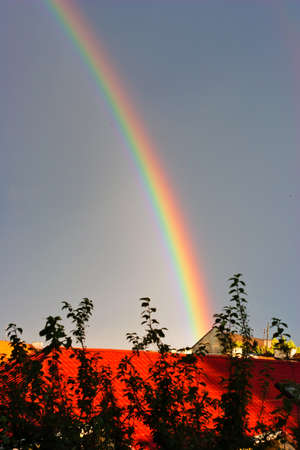 Fine rainbow over the red roof shined with the sun