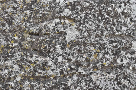 close up of surface of old stone Stock Photo