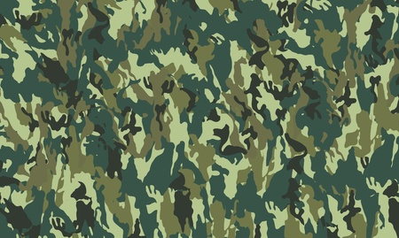 defense equipment: patr�n de camuflaje