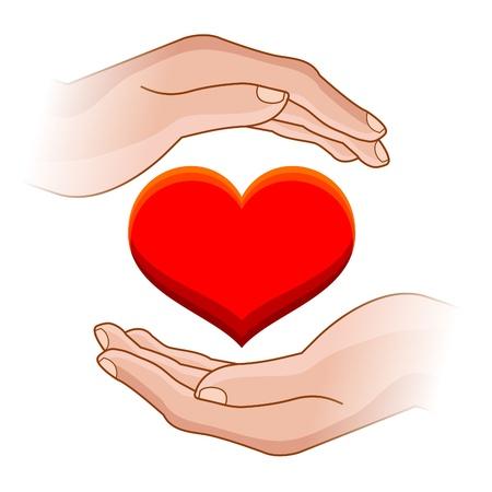 donor: Ilustraci�n de la mano del hombre con el coraz�n en ella Vectores