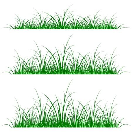Gras Silhouette auf gr�nen und blauen Hintergrund
