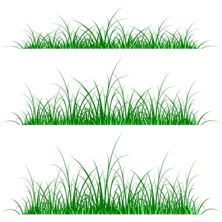 grass silhouette on green and blue background Stock Vector - 9663680
