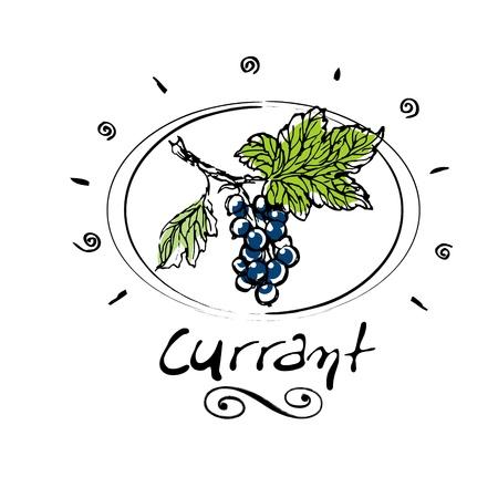 currant:   currant in vignette Illustration