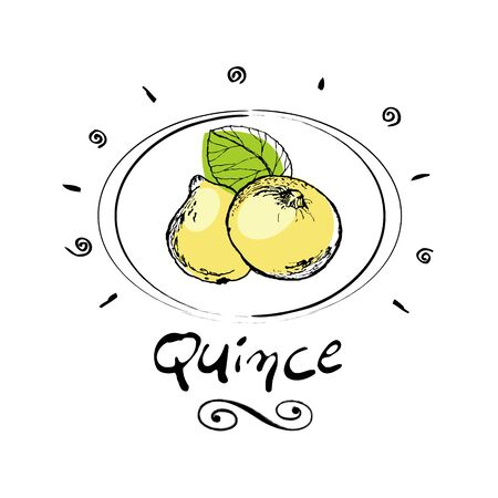 quince in vignette
