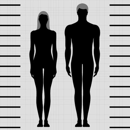 macho y hembra plantillas del cuerpo en vista frontal