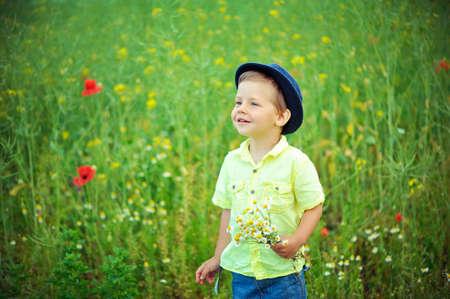 petites fleurs: Marcher sur une prairie Banque d'images