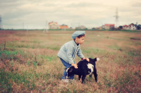 the boy in a cap in the field grazes goats Stock Photo - 14060166