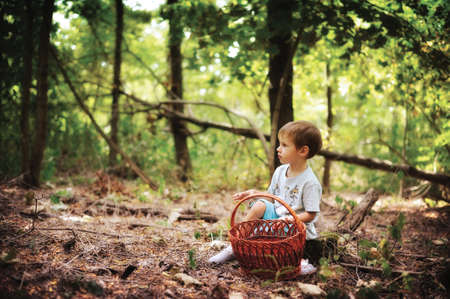 frac12: The wood, clearing on hemp sits the boy with a basket