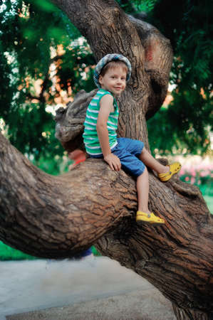 the boy in a hat sits on a big tree