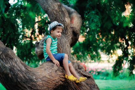 the boy in a hat sits on a big tree Stock fotó - 14263510