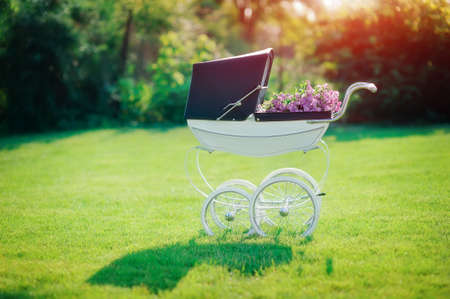 on a green field in beams of the sun there is a beautiful baby carriage Stock Photo