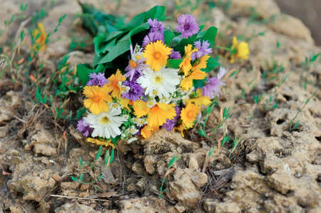 on the earth the bouquet of different wild flowers lies photo